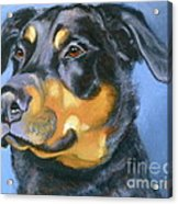 Rescue In Blue Acrylic Print by Susan A Becker