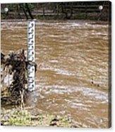 Rising River Level Acrylic Print by Mark Williamson