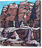 Rock Face Acrylic Print by Sandy Tracey