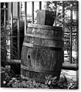 Roll Out The Barrel Acrylic Print by Shelley Blair
