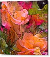 Rose 146 Acrylic Print by Pamela Cooper