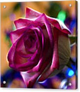 Rose Celebration Acrylic Print by Bill Tiepelman