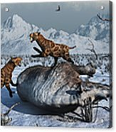 Sabre-toothed Tigers Battle Acrylic Print by Mark Stevenson