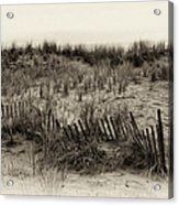 Sand Dune In Sepia Acrylic Print by Bill Cannon