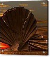 Scallop Sunrise At Aldeburgh Acrylic Print by Darren Burroughs