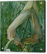 Scarecrow Acrylic Print by Jackie Rock