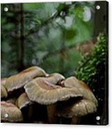 Sea Of Heads Acrylic Print by Odd Jeppesen
