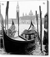 Seagull From Venice - Venezia Acrylic Print by Bronco - J. Heiligensetzer