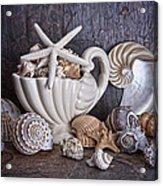 Seashells Acrylic Print by Tom Mc Nemar