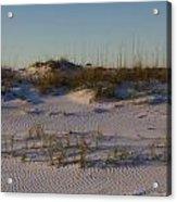 Seaside Dunes 4 Acrylic Print by Charles Warren
