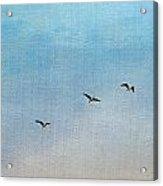 Seven Acrylic Print by Rebecca Cozart