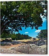 Shady Hilltop Acrylic Print by Paul W Faust -  Impressions of Light