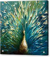 Showoff 3  White Peacock Acrylic Print by Dina Dargo