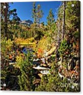 Sierra Nevada Fall Beauty At Lily Lake Acrylic Print by Scott McGuire