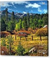 Sierra Nevada Fall Majesty Acrylic Print by Scott McGuire