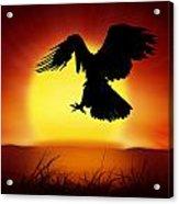Silhouette Of Eagle Acrylic Print by Setsiri Silapasuwanchai