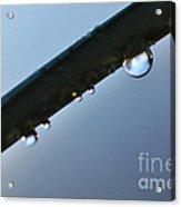 Silky Droplet Acrylic Print by Kaye Menner