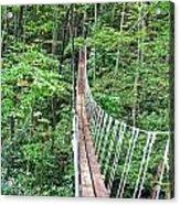 Sky Bridge 2 Acrylic Print by Aimee L Maher Photography and Art Visit ALMGallerydotcom