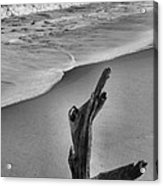 Snag And Surf Acrylic Print by Steven Ainsworth