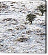 Snow On Moorland Acrylic Print by Adrian Bicker