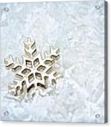 Snowflake Acrylic Print by Darren Fisher