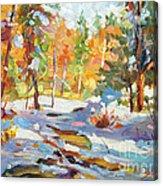 Snowy Autumn - Plein Air Acrylic Print by David Lloyd Glover