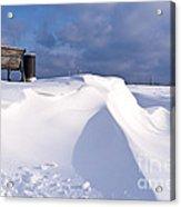 Snowy Day Acrylic Print by Heiko Koehrer-Wagner
