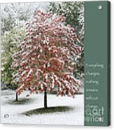 Snowy Maple With Buddha Quote Acrylic Print by Heidi Hermes