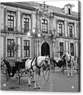 Spain Acrylic Print by Matt Wilton