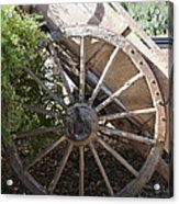 Spoked Acrylic Print by Carole Hinding
