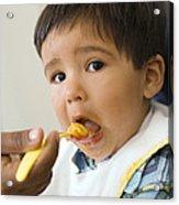 Spoon-feeding Acrylic Print by Ian Boddy