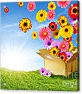 Spring Delivery Acrylic Print by Carlos Caetano