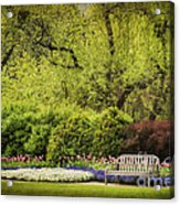Spring Garden Acrylic Print by Cheryl Davis