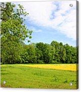 Springtime In Franklin Acrylic Print by Kristin Elmquist