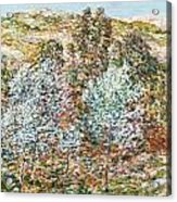 Springtime Vision Acrylic Print by Childe Hassam