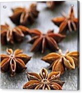 Star Anise Fruit And Seeds Acrylic Print by Elena Elisseeva