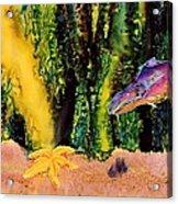 Star Fish Acrylic Print by Carolyn Doe