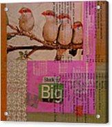 Stock Up Big Acrylic Print by Adam Kissel