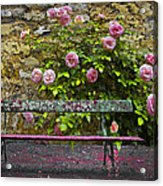Stop And Smell The Roses Acrylic Print by Debra and Dave Vanderlaan