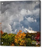 Storms Coming Acrylic Print by Ronald Lutz