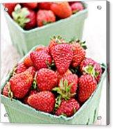 Strawberries Acrylic Print by Elena Elisseeva