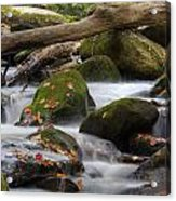 Stream Of Thought Acrylic Print by Charles Warren