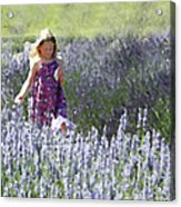 Stroll Through The Lavender Acrylic Print by Brooke Ryan