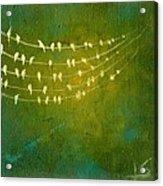 Summer Song Acrylic Print by Lisa Stevens