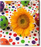 Sunflower And Colorful Balls Acrylic Print by Garry Gay