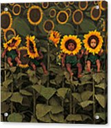 Sunflowers Acrylic Print by Anne Geddes
