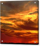 Sunset Bull  Acrylic Print by Cliff Norton