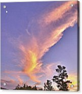 Sunset Swoosh Acrylic Print by Forest Alan Lee