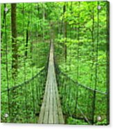 Suspension Bridge Acrylic Print by Daniel Muller