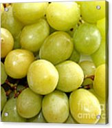 Sweet Green Grapes Acrylic Print by Barbara Griffin